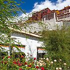 Tibet. Lhasa. Potala Palace. Garden.  by vadim19
