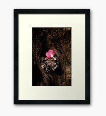 The flower of love Framed Print