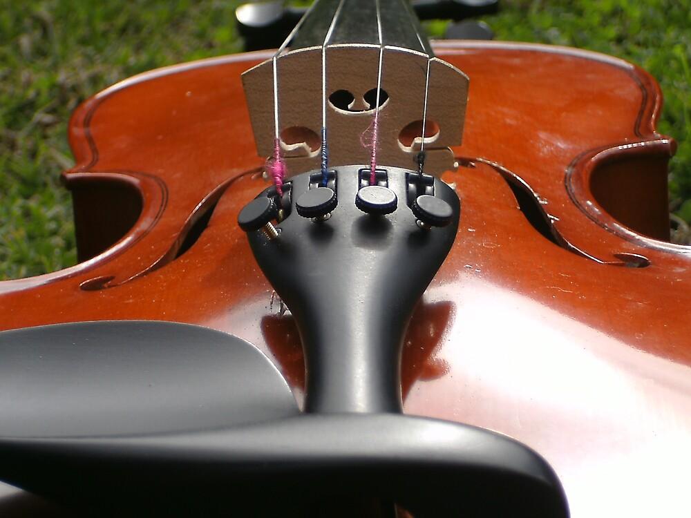 Violin! by MaddyPaddy