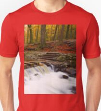 The stepping stones on the Shimna river in Tollymore, County Down, Northern Ireland T-Shirt