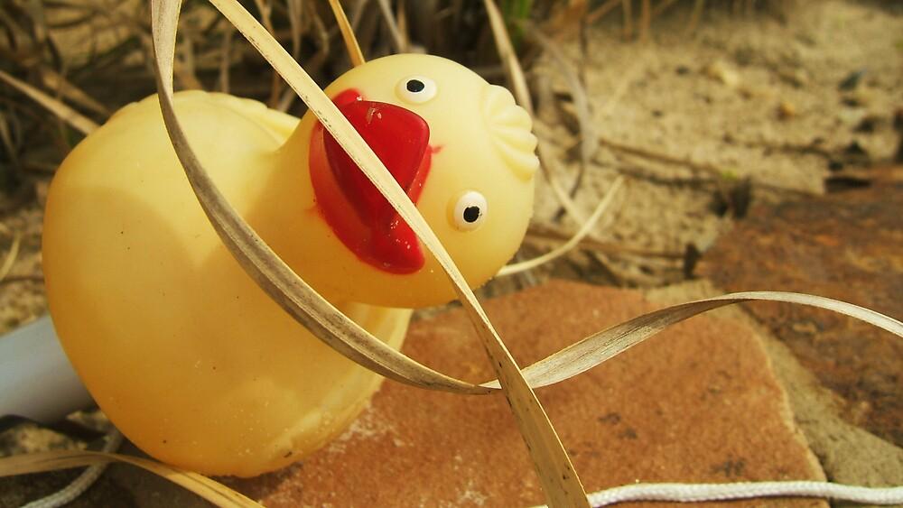 Chlorine Duck by Diana Forgione