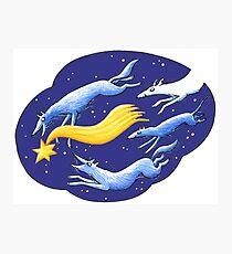 Sternschnuppen - Falling Stars - Sirius - Sternenfänger Photographic Print