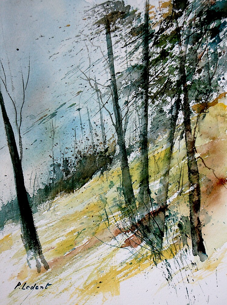 watercolor 110708 by calimero