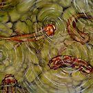 Koi Fish Pond by Cherie Roe Dirksen