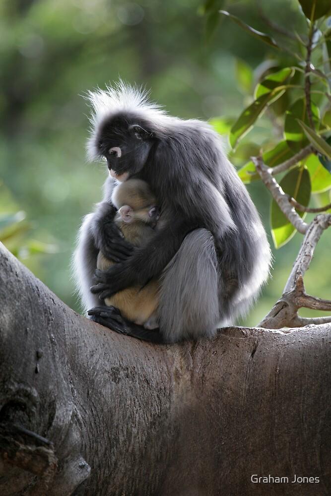 Monkey Madonna and Child by Graham Jones