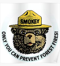 Prevent Fires Poster