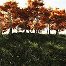 Autumn Trees in Sunshine by algoldesigns