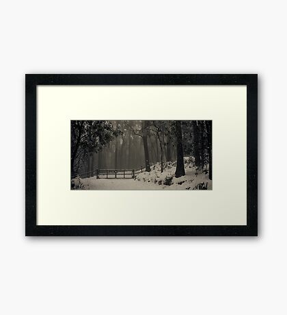Winter Soltice Framed Print