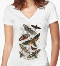 Victorian Moth Insects illustration Women's Fitted V-Neck T-Shirt