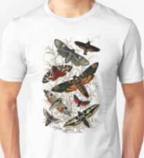 Victorian Moth Insects illustration Unisex T-Shirt