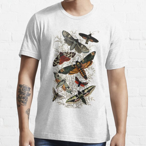 Victorian Moth Insects illustration Essential T-Shirt