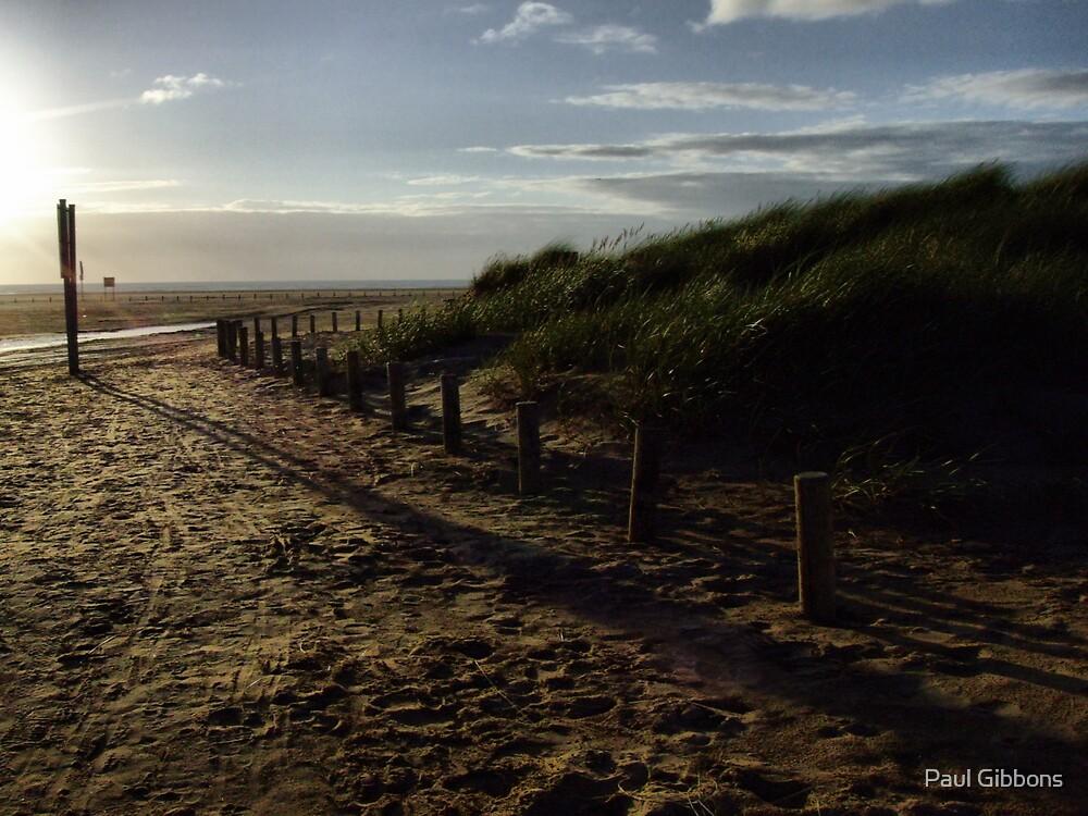 Sand and Shadows by spottydog06