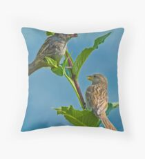 Morning Discussion Throw Pillow