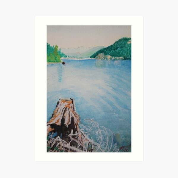 Oakridge Reservoir #4 Art Print