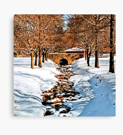 Dimmick Park, Hellertown Pa. Canvas Print