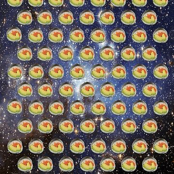Sushi in space by RayaJK