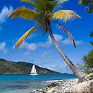 Caribbean Dreams by Grahame Newell