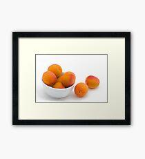 Fresh Apricots Framed Print