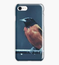Der Regen  iPhone Case/Skin