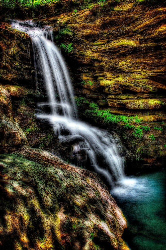 Magnolia Falls by Scott Ward