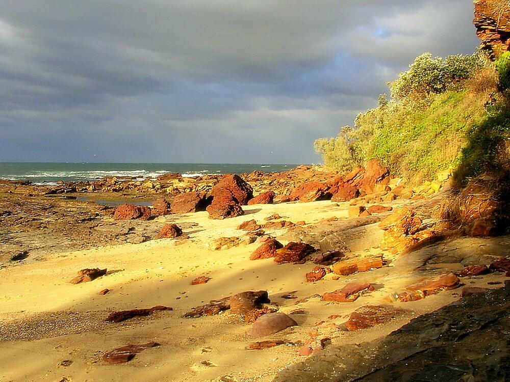 Bartlett Beach NSW Australia by gayle hoskins-nestor