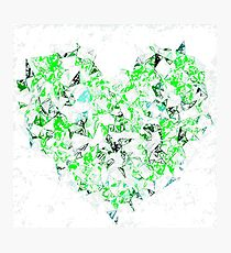 green heart shape abstract with white abstract background Photographic Print