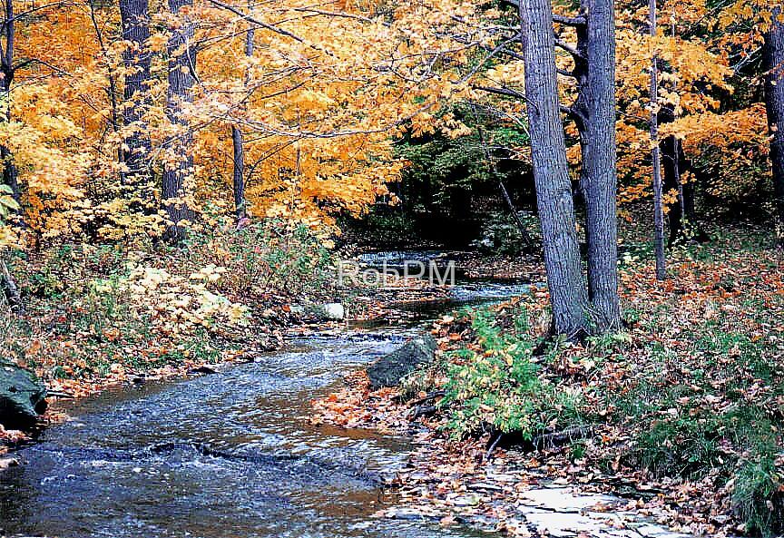 Autumn Scene by RobPM
