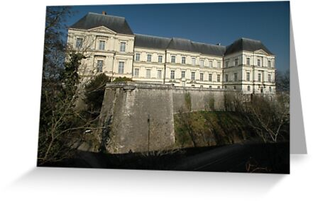 Chateau, Blois, Loire Valley, France, Europe 2012 by muz2142