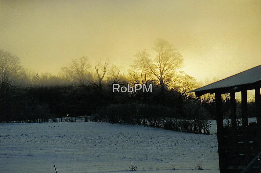 Misty Winter Sunrise by RobPM