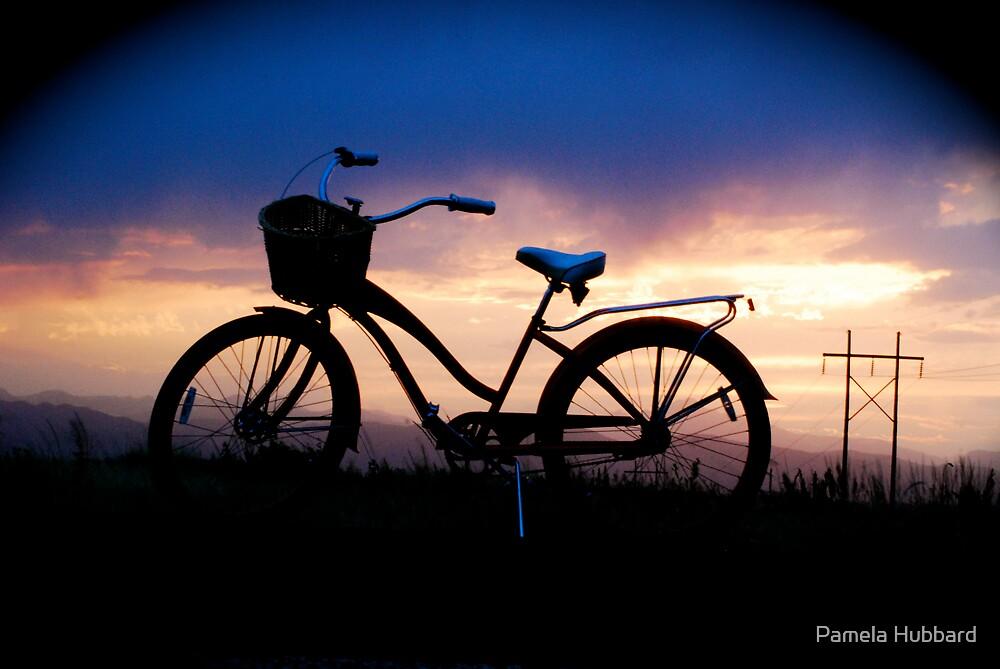 Dream Cycle by Pamela Hubbard