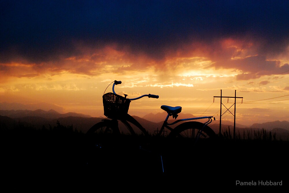 Night Rider by Pamela Hubbard
