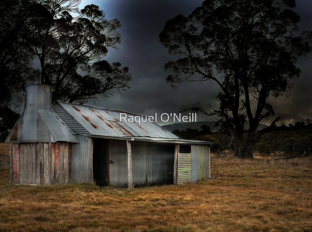 Waterhole Hut by Raquel O'Neill