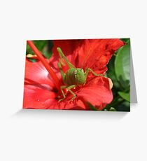 GREEN HOPPER Greeting Card