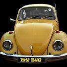 My bug by missmoneypenny