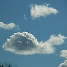 Slow Clouds by AnnDixon