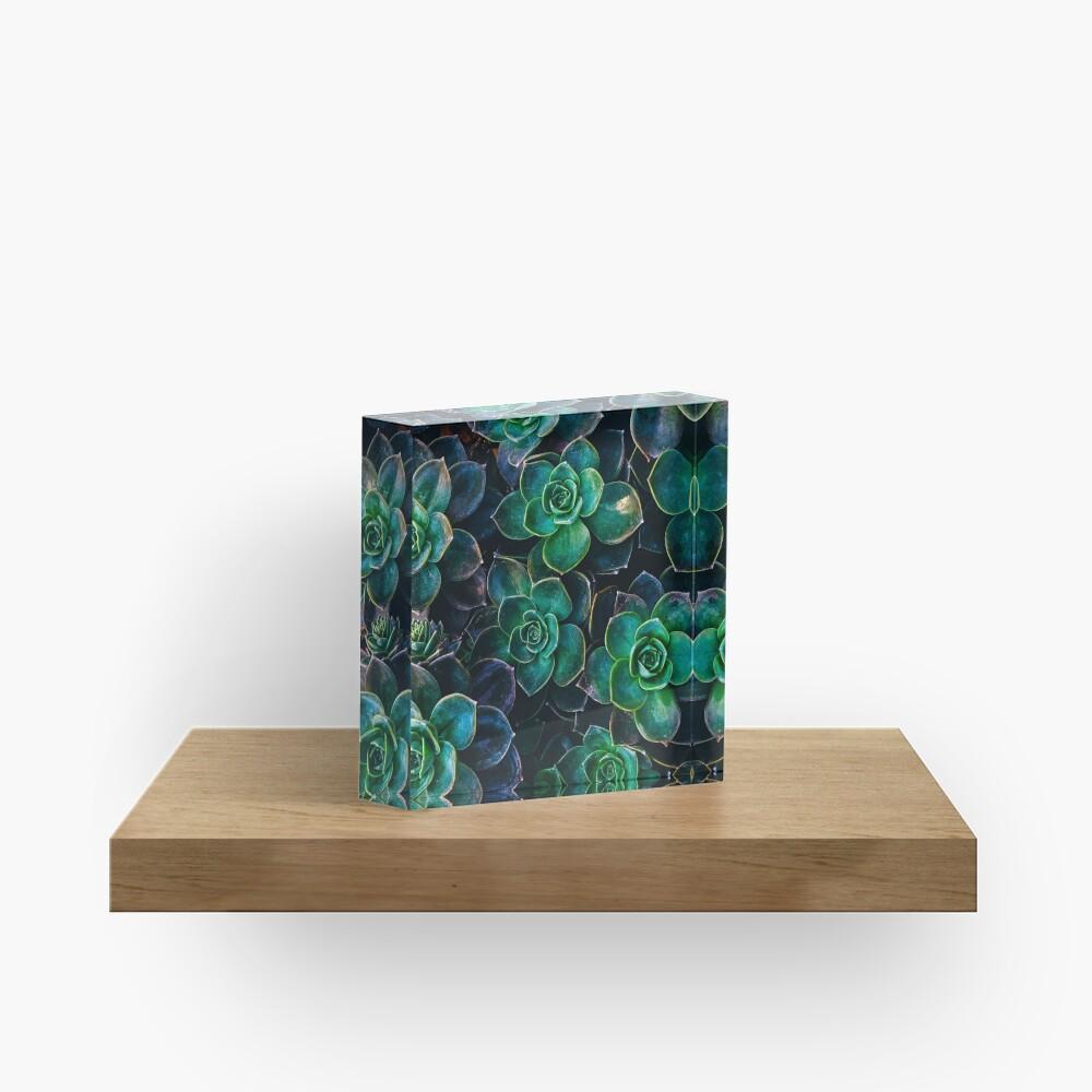 Succulent fantasy Acrylic Block