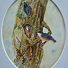 NUTHATCH HOME ... by Marilyn Grimble