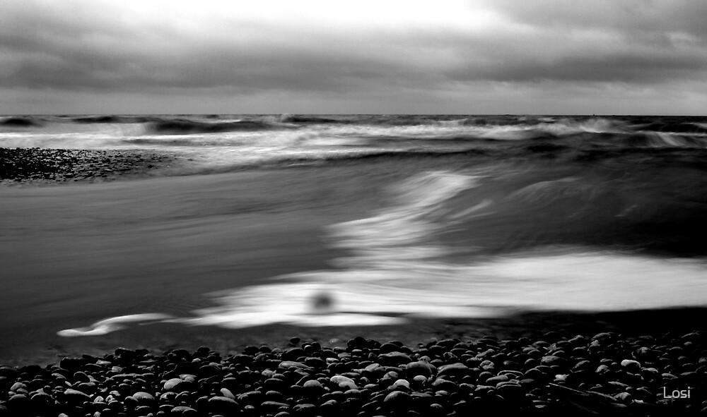 Seashore by Losi