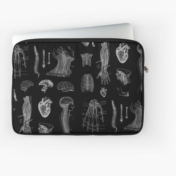 Vintage Anatomy Print  Laptop Sleeve