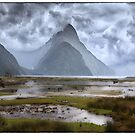 Milford Sound New Zealand by Margaret Metcalfe