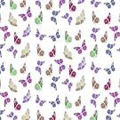 Pastel Colored Butterfly Pattern Vector by taiche