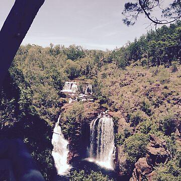 Darwin Waterfall by lachalexander