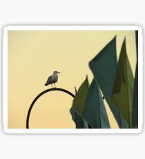 Seagull at sunset Sticker