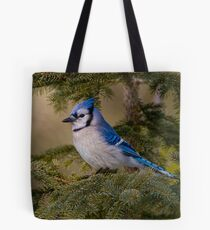 Blue Jay - Algonquin Park, Ontario Tote Bag