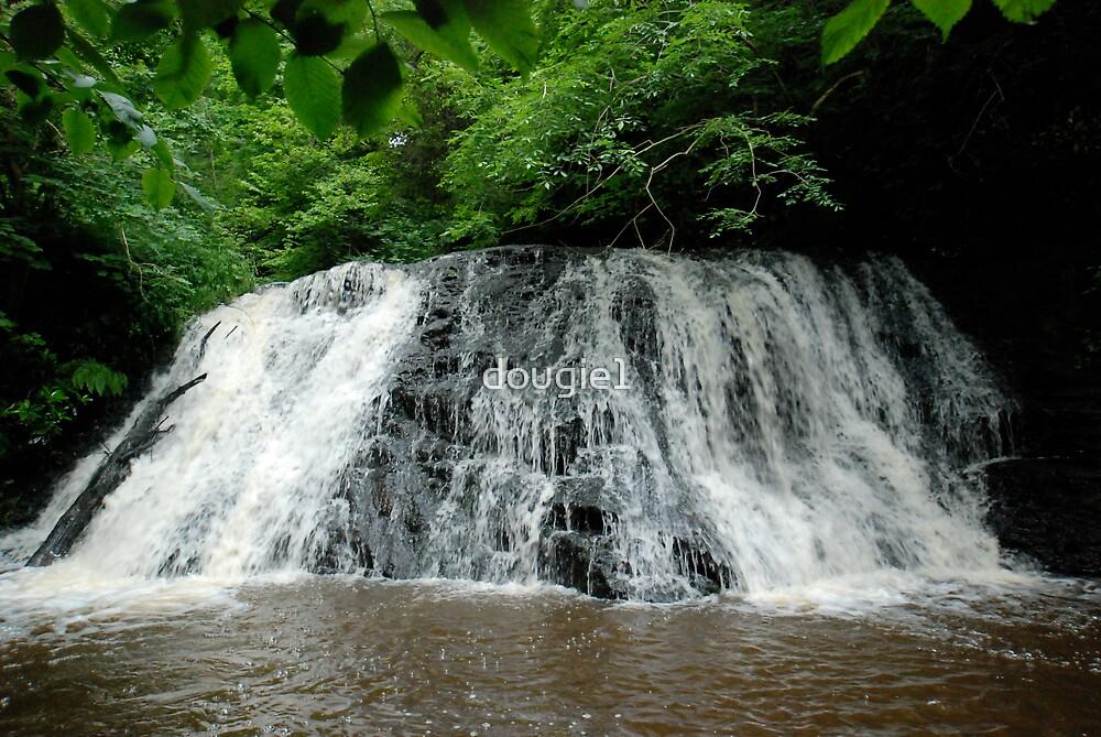 Kildale falls by dougie1