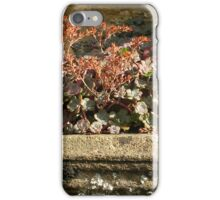Sherborne Wall Niche iPhone Case/Skin