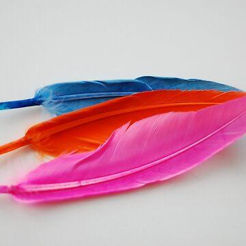 Blue, Orange, Pink by DELAVALLE