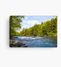 Adirondacks Schroon River Canvas Print