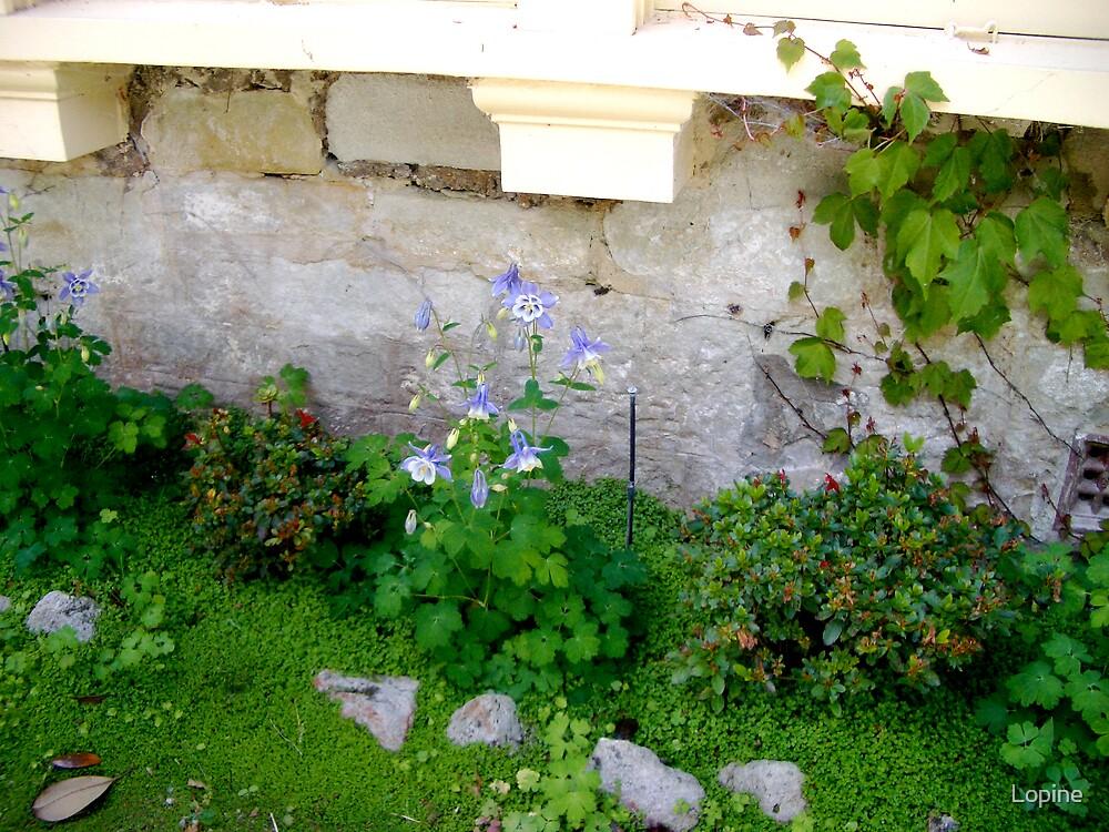 Unpretentious garden... by Lopine