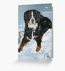 Bernese Mountain Dog Painting Greeting Card